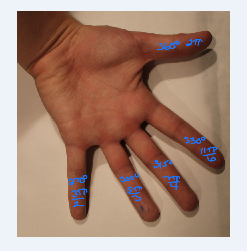 Left Palm Labeled